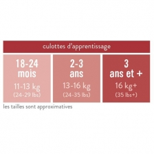 Culotte D'Apprentissage - Blanc - 2-3 ans - Bambino Mio