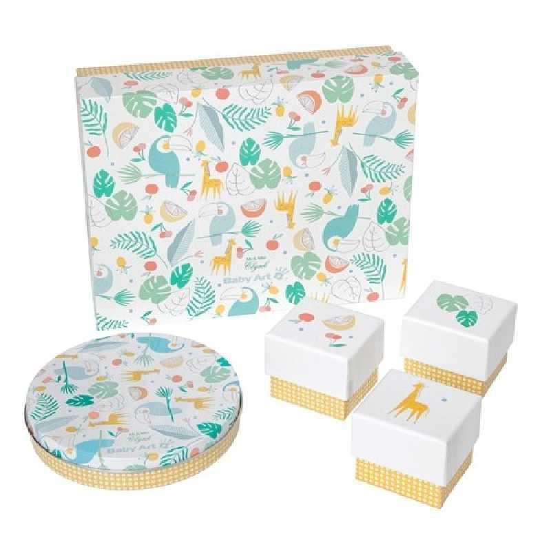 Magic box à empreintes Baby Art Toucans