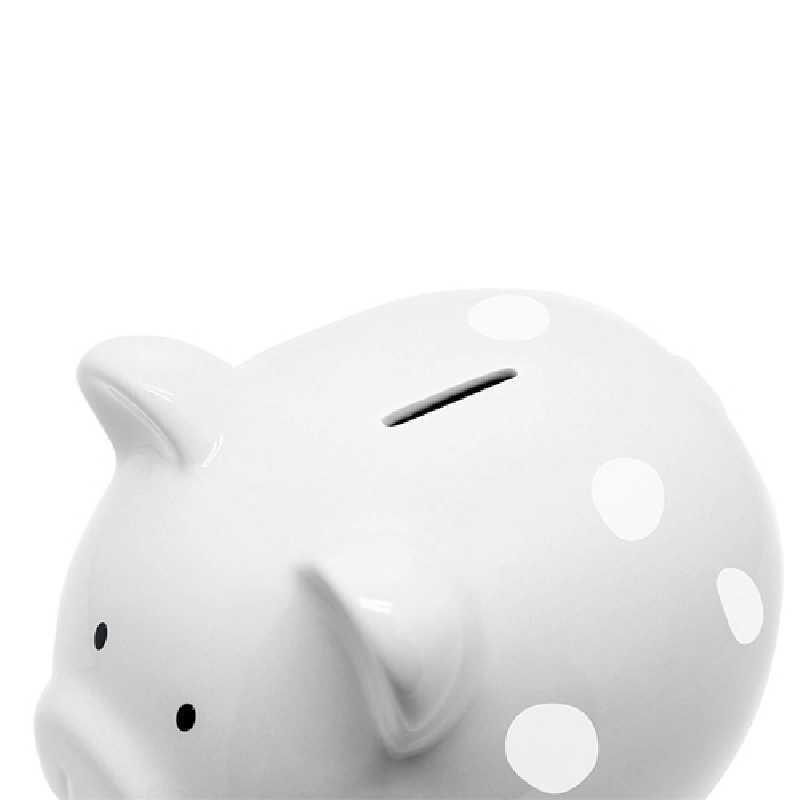 Tirelire en Céramique Cochon Gris