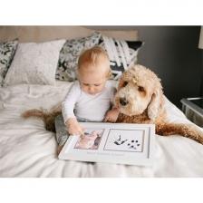 Cadre empreintes de pattes et de bébé