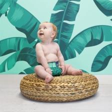 Kit premium de la naissance à la propreté Forêt Tropicale MIOSOLO
