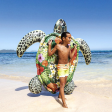 Tortue Gonflables a Chevaucher Intex