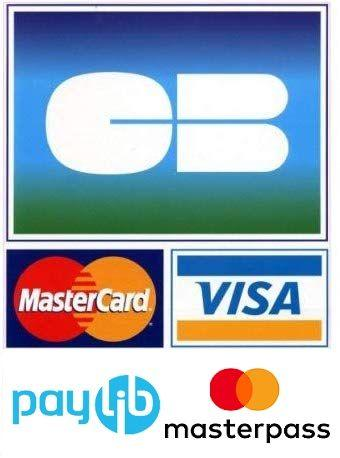 visa-paylib.jpg